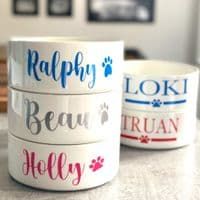 Ceramic Personalised Dog Bowls - Signature